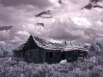 Abandoned homestead, off old Route 66